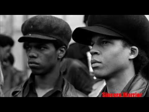 Vanguard of the Revolution- The Real Story of the Black Panther Party